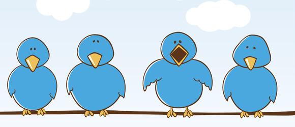Twitter and Social Media Branding